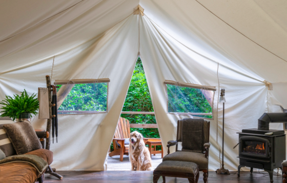 Glamping in the Rocky Mountains