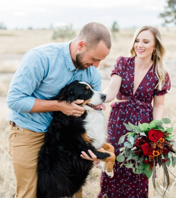 Colorado Engagements with a Bernese Mountain Dog