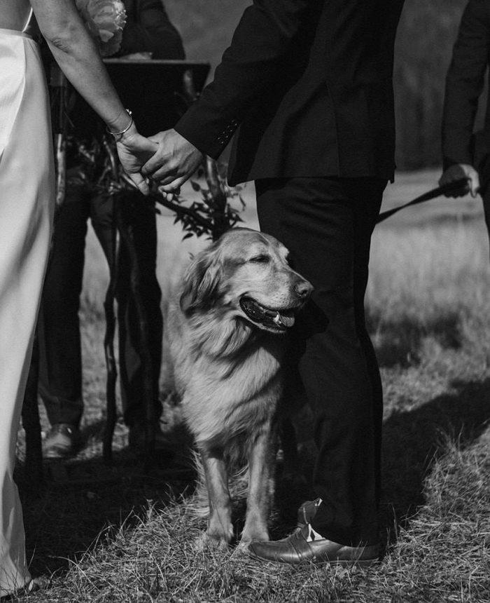 Sunny Wedding Ceremony at Senate Meadows