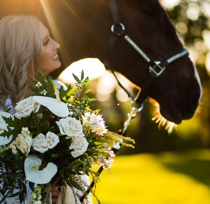 A Bride and Her Horse