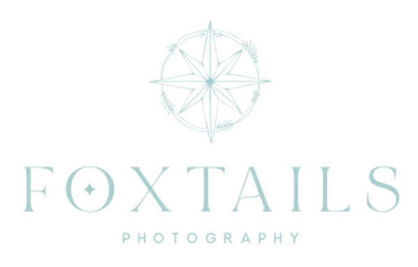 Foxtails Photography