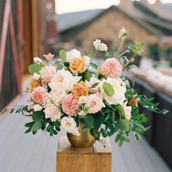 Plum Sage Flowers
